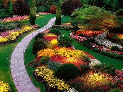 Progettazione e realizzazione di giardini e terrazzi torino